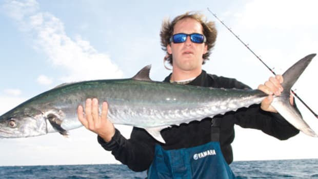 sportfishing_1311_prm.jpg promo image