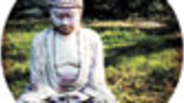 budda_85x.jpg promo image