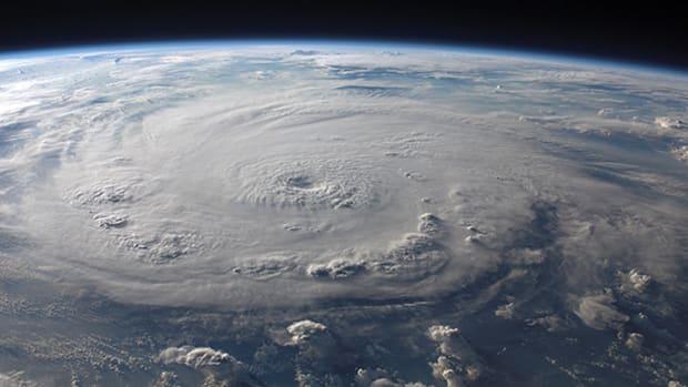hurricane-prm650.jpg promo image