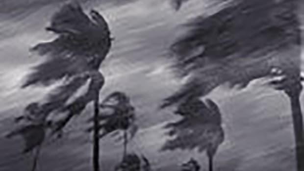 hurricane-650w.jpg promo image