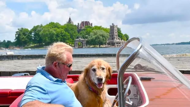 prm-Peter-Mellon-with-dog
