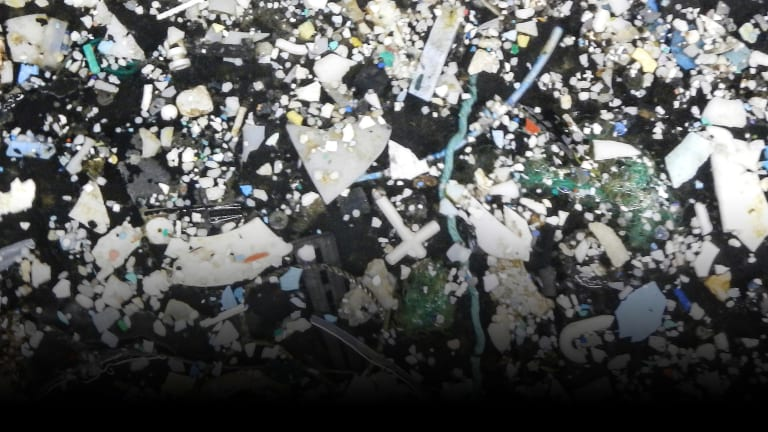 Eliminating the Great Pacific Garbage Patch