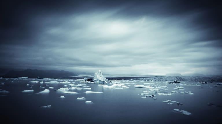 Arctic Calling
