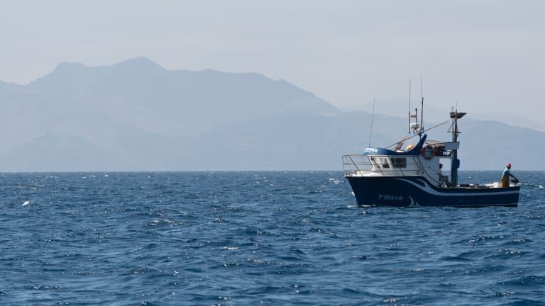 Chasing Blue Marlin in the Canary Islands