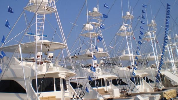 marlin-flags-prm.jpg promo image