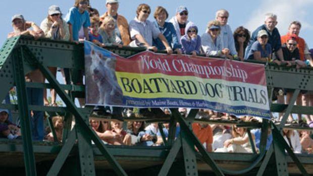 boatyard-dog-trials-inset.jpg promo image