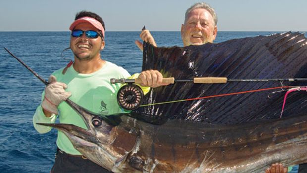 pacific_sailfish_prm.jpg promo image
