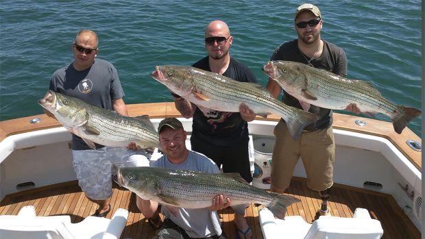 Striped Bass catch