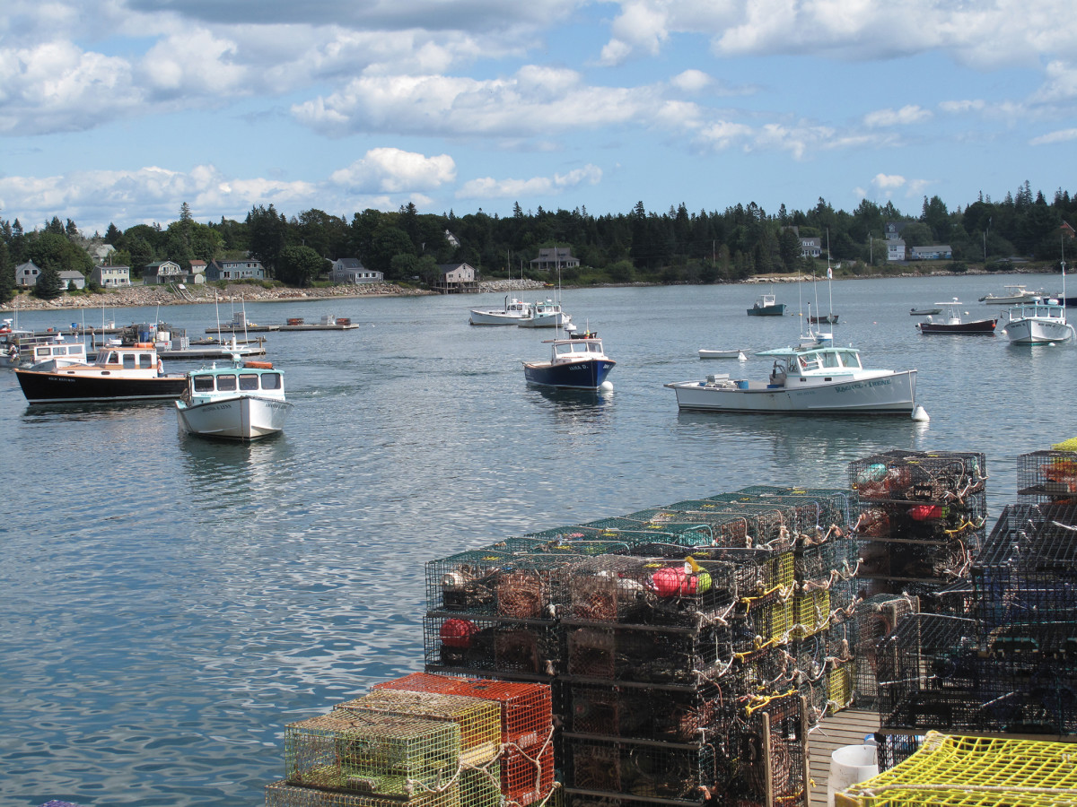 A typical working harbor in Mount Desert Island.