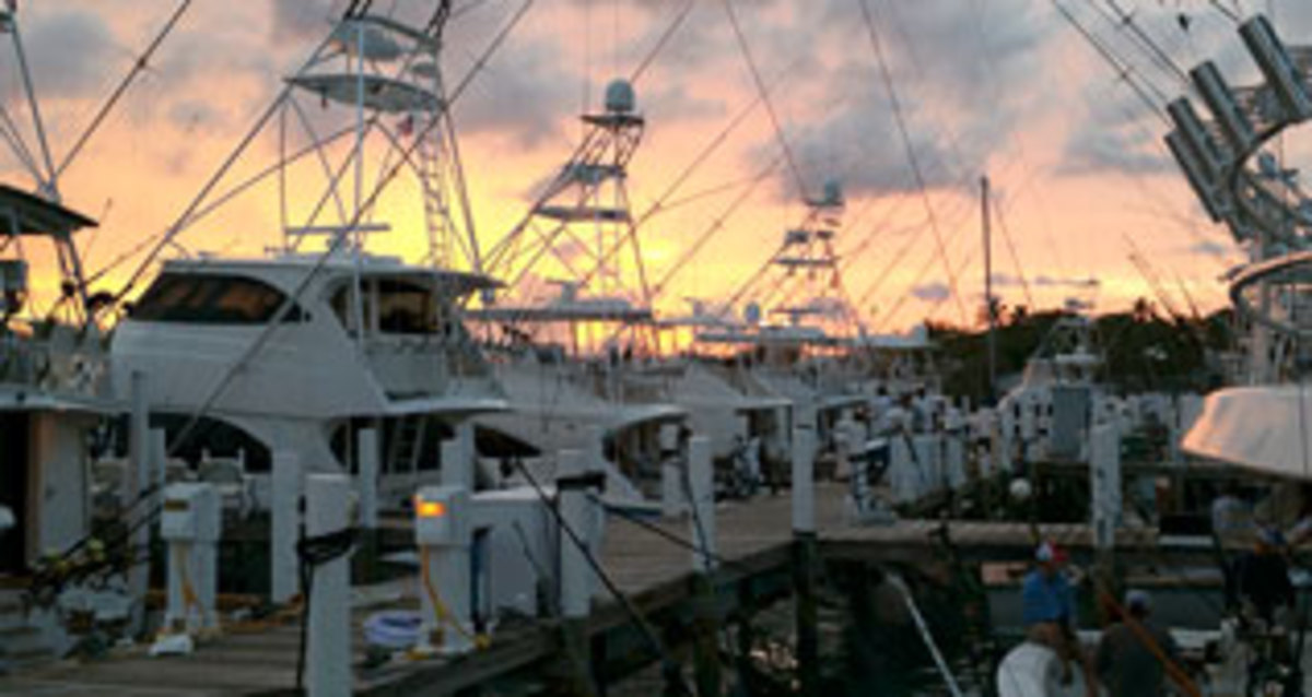The Bahamas Billfish Championship