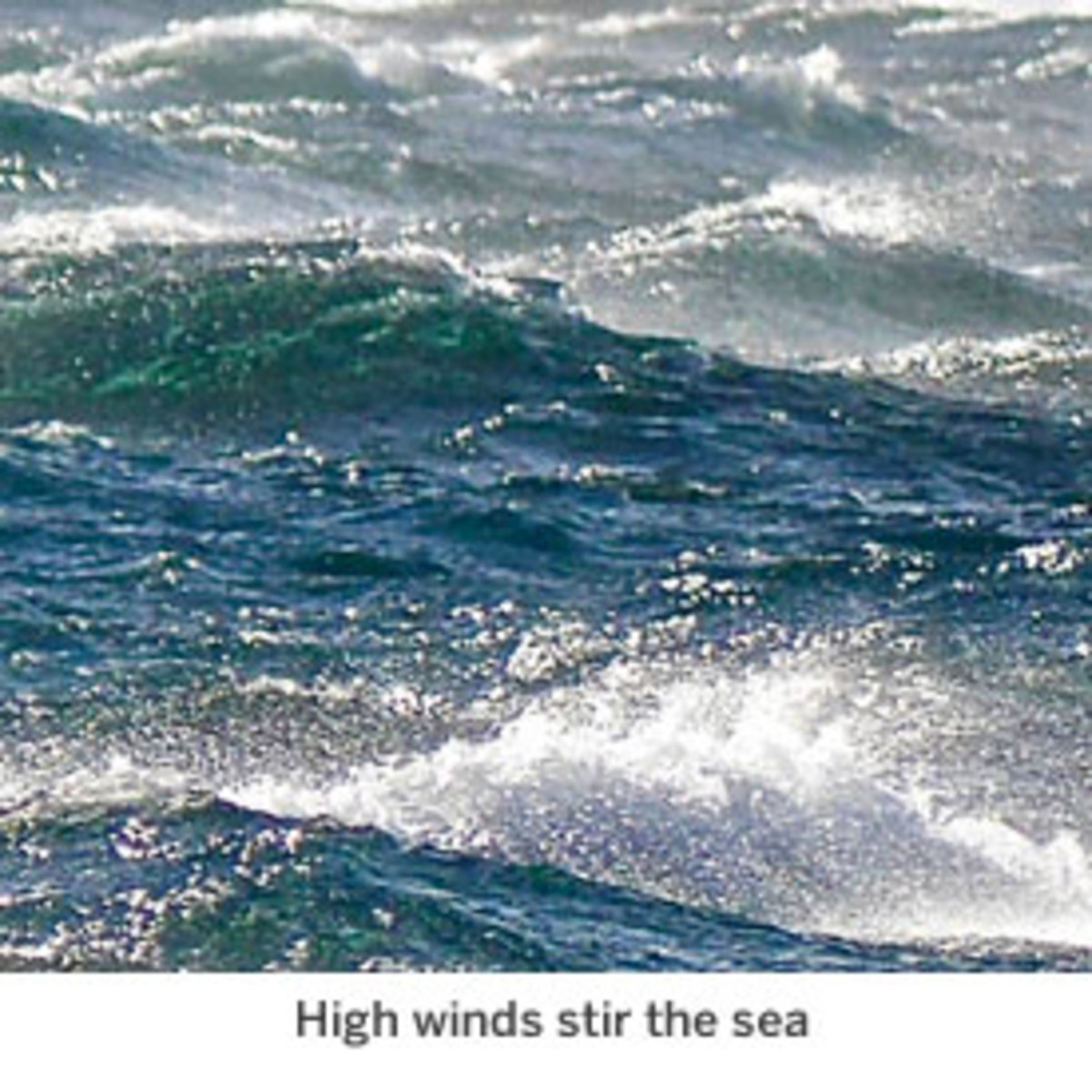 High winds stir the sea