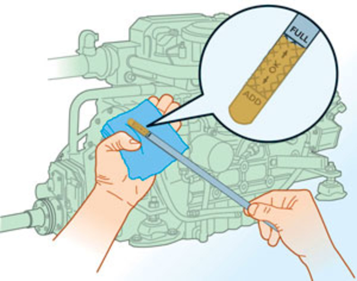 Check your oil levels when the engine is cool for an accurate reading.