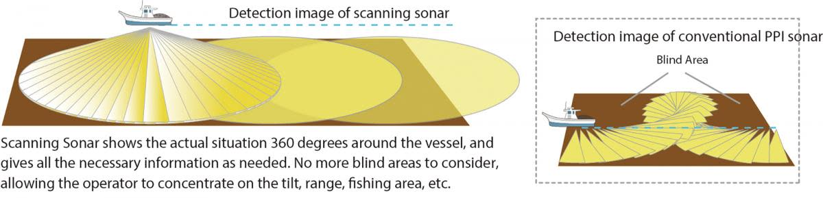 scanning sonar illustration