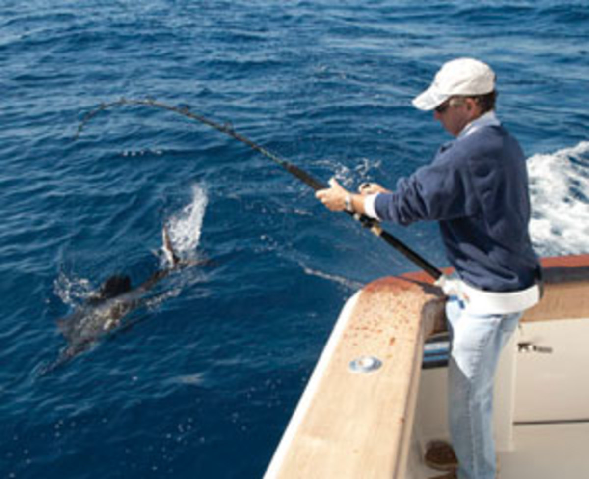Rig your baits properly to entice Florida sailfish.