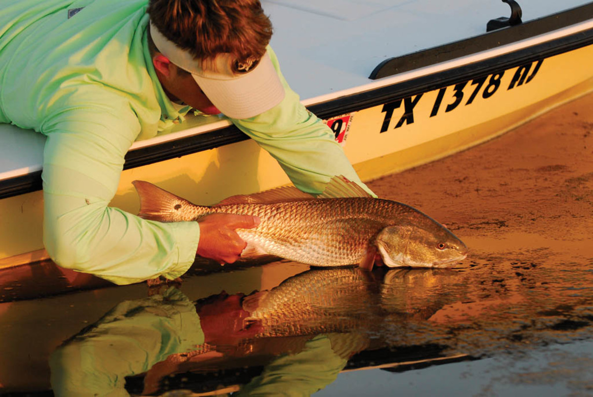 Click to enlarge - Redfish photo by Scott Sommerlatte