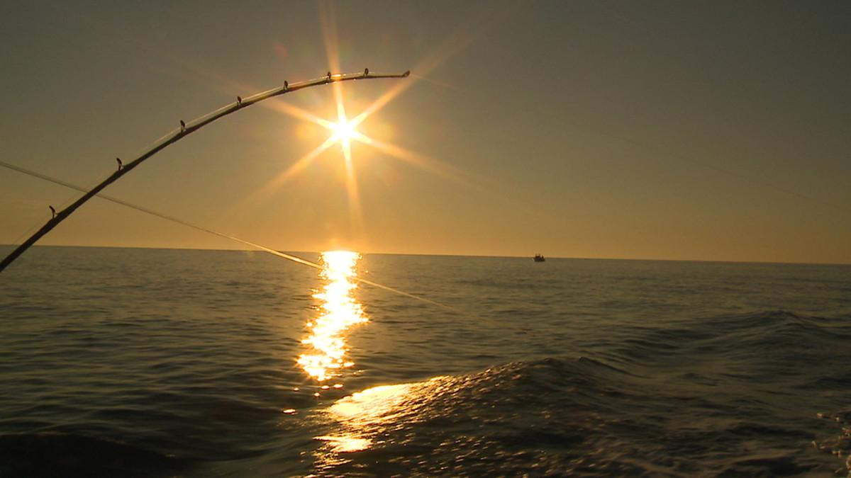 Sportfishing in Costa Palmas