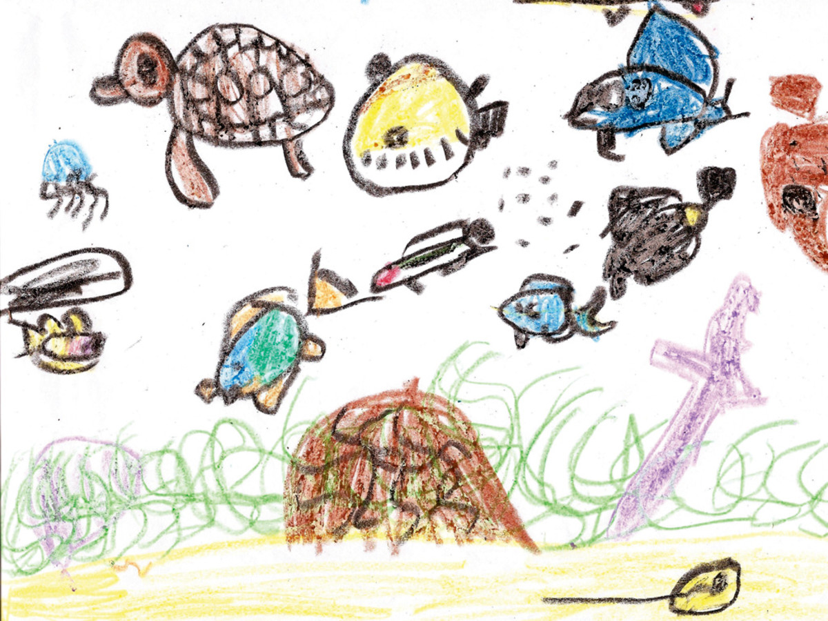 Zuzu's artwork showing tropical fish in the BVI.