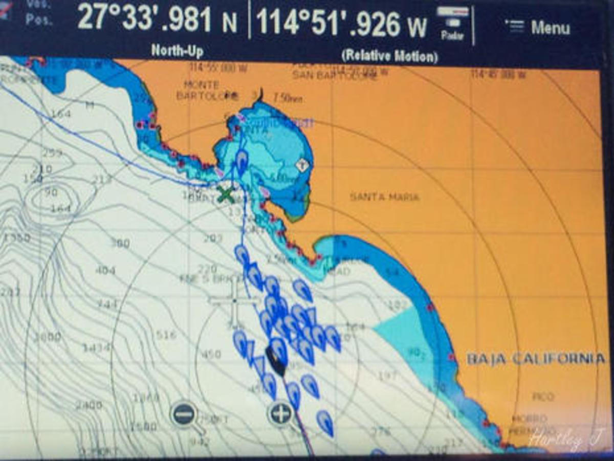 Baja HaHa rally AIS on Raymarine courtesy Hartley Gardner.jpg