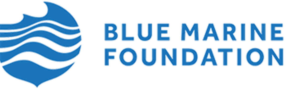 The Blue Marine Foundation