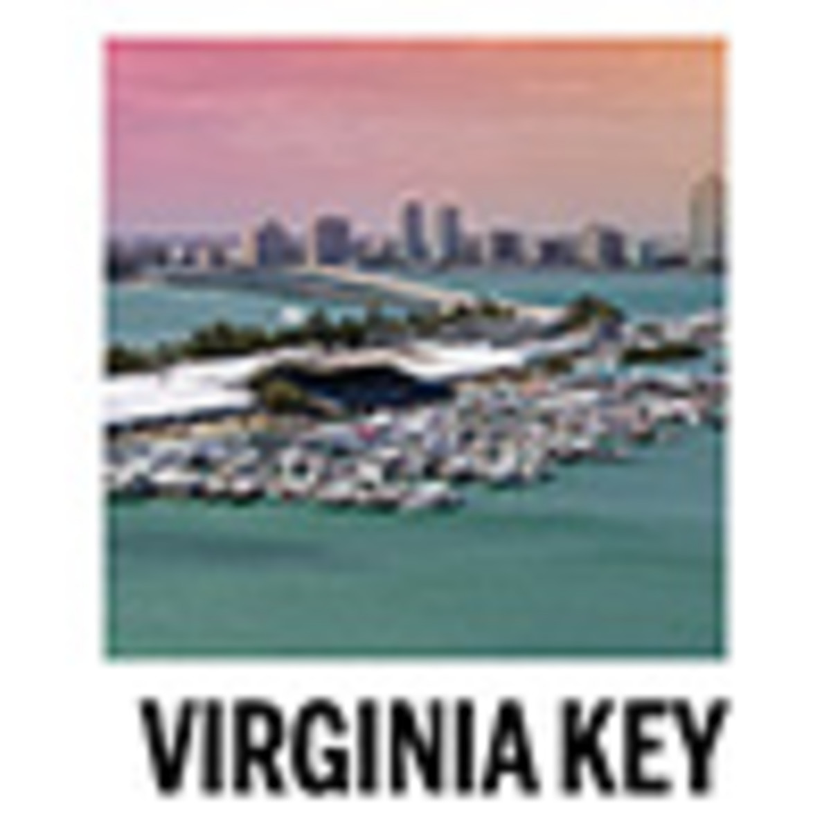100x Virginia Key icon