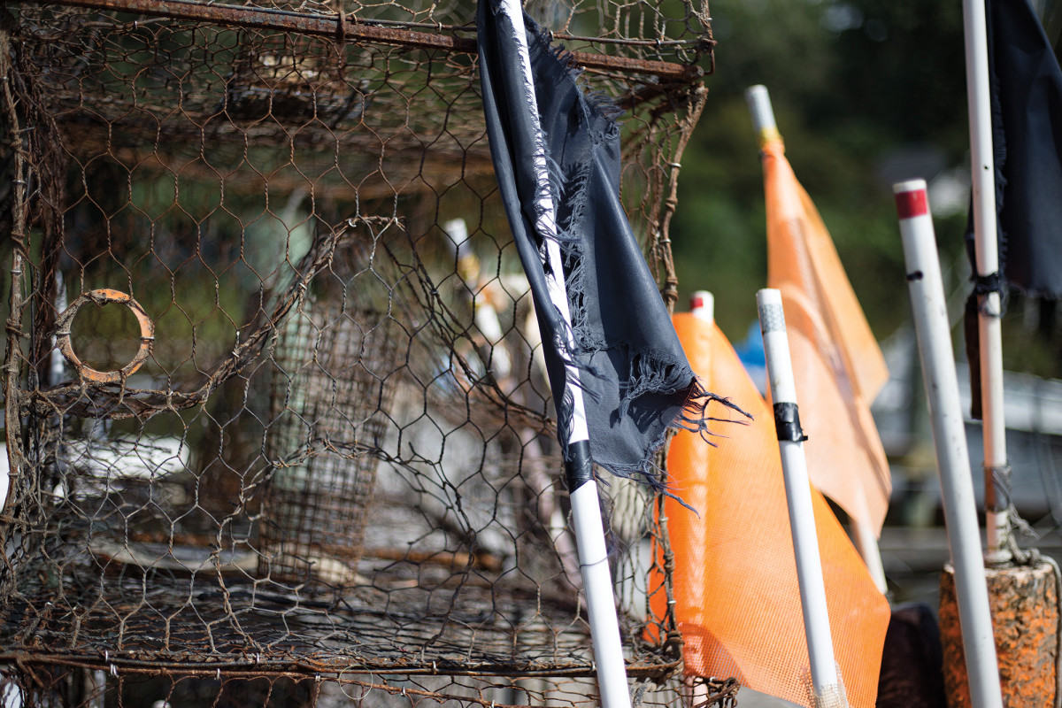 Traps and pots: You're looking at the crabbing arsenal of a Chesapeake waterman.