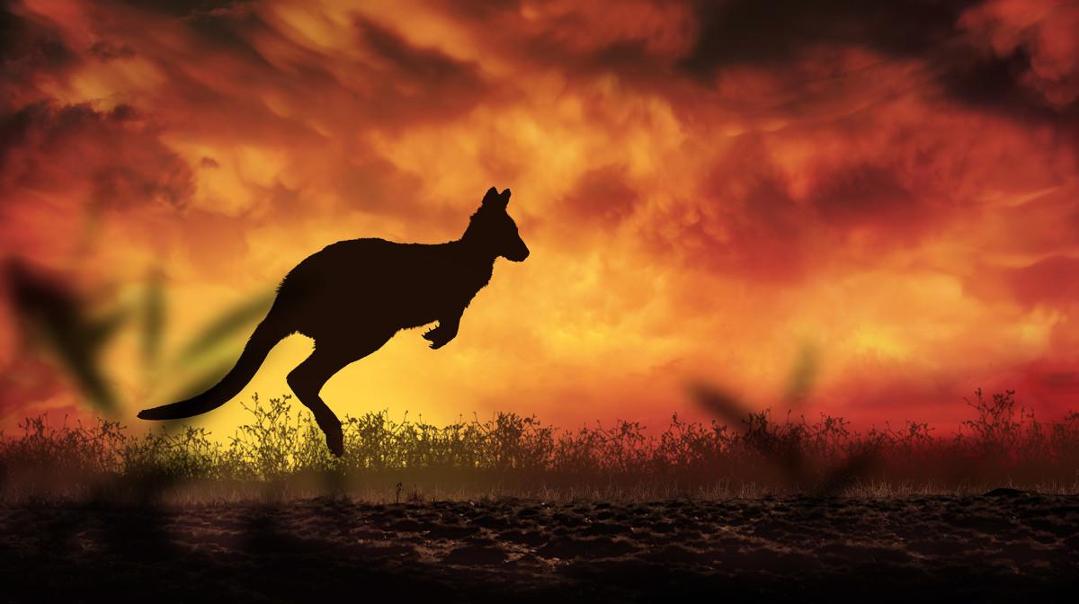 prm-Australia-fires