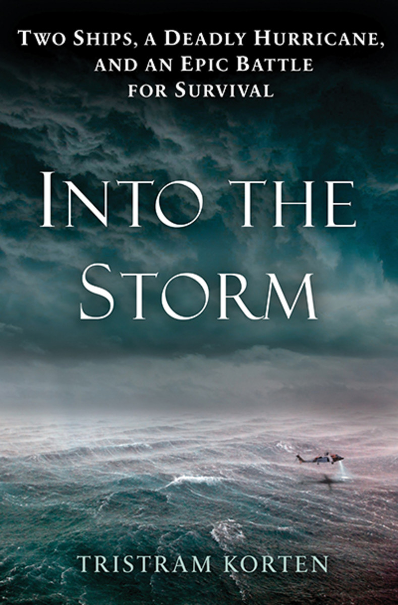 Into-The-Storm-bookcover