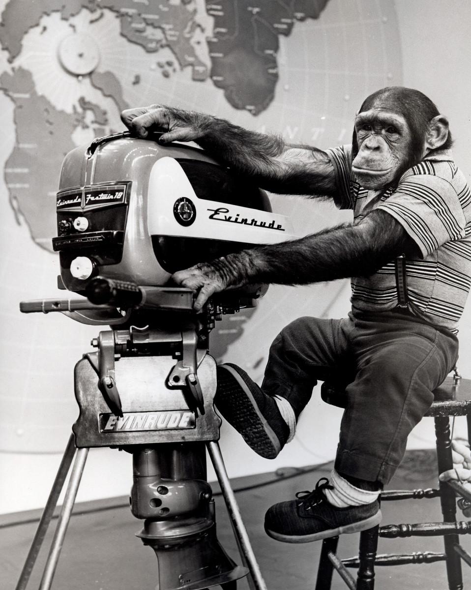 evinrude-chimp-2000w