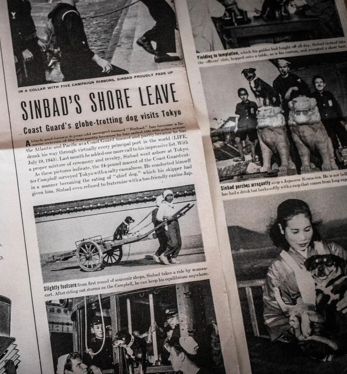 Sinbad-newspaper