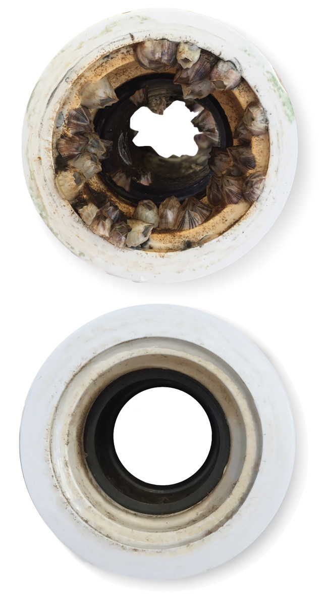 Even a little marine growth in your intakes can cause big problems.